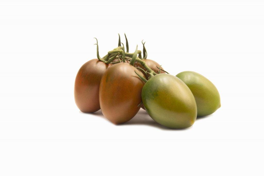 TOMACHOC®, the Top Seeds International chocolate tomato range